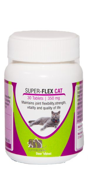 Superflex Cat